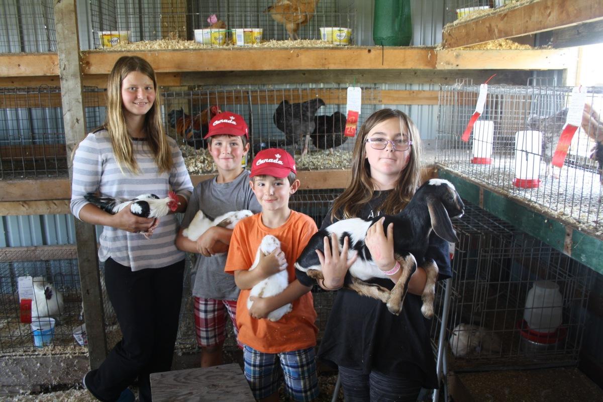 holding animals