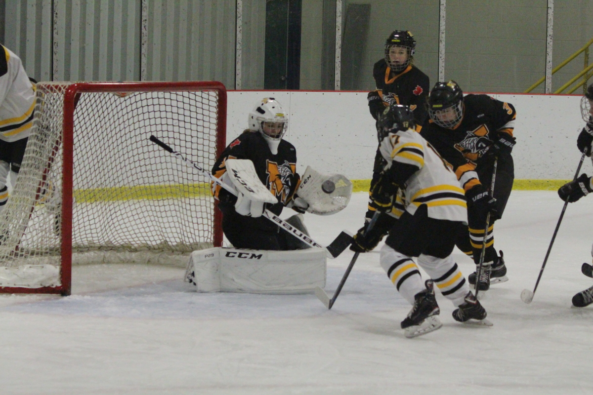 flying puck