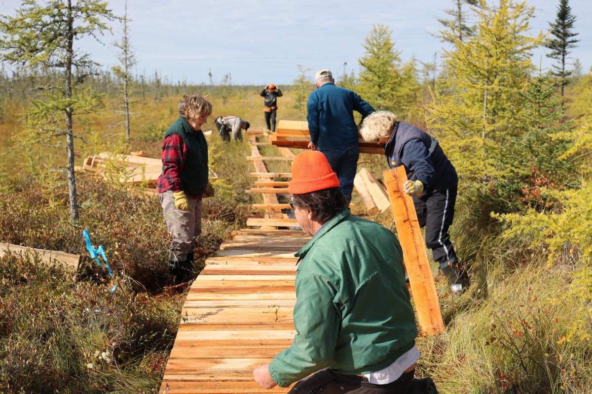 peat trails lookback