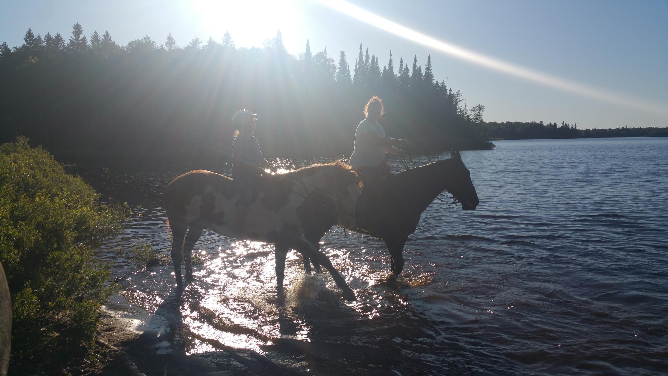 bliss horse