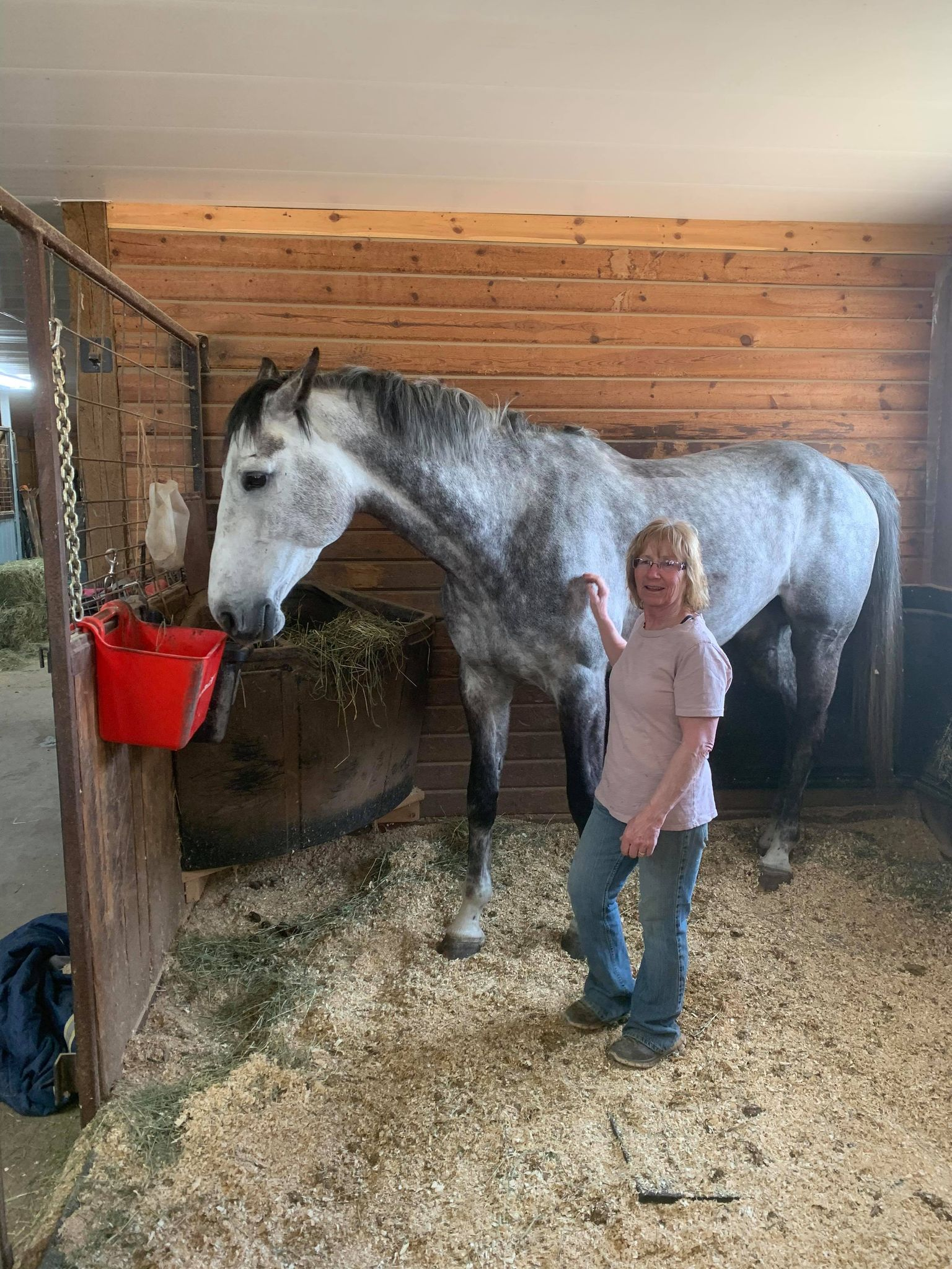 Celebrity horse makes a local stop